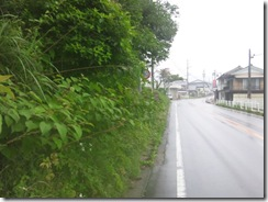 小鷹神社前「40km制限見えず」2