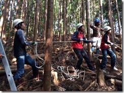 林業2-1