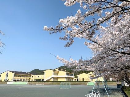 R20400校舎と桜.jpg