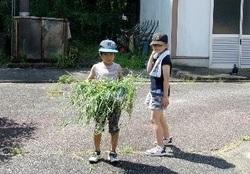 http://www.kitashitara.jp/taguchi-el/assets_c/2020/08/100_0443-thumb-250xauto-183242.jpg