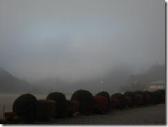 1121朝靄