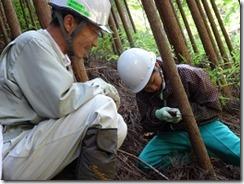 林業体験学習030