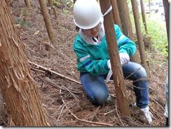 林業体験学習054