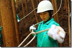 林業体験学習155