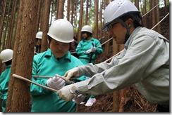 林業体験学習161