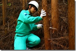 林業体験学習172