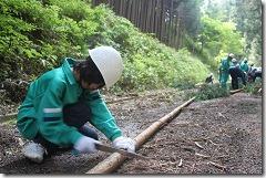 林業体験学習191