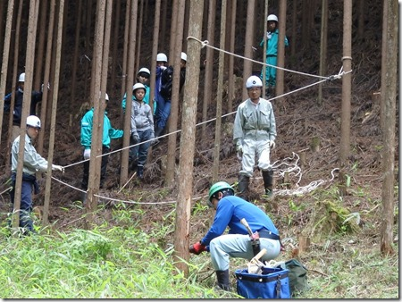 林業体験学習426