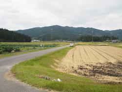 P9280026.JPGブログ.jpg