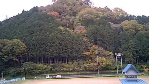 裏山.jpg